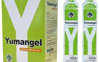 Một Số Lưu Ý Không Thể Bỏ Qua Trước Khi Dùng Thuốc Dạ Dày Chữ Y (Yumangel)