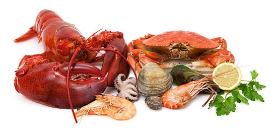Hạn chế các món ăn có tính hàn như cua, sò, ốc, nghêu