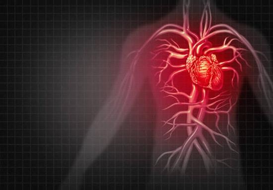 Giảm cholesterol và phòng ngừa bệnh tim mạch